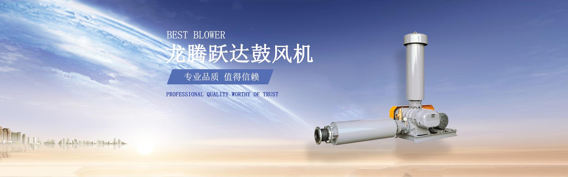 台湾龙铁罗茨风机